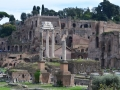 From Forum Looking Towards The Palatine