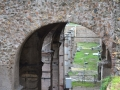 Peek Through The Arches